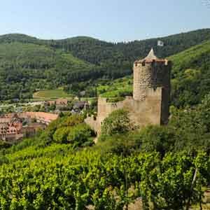 Séminaire en Alsace